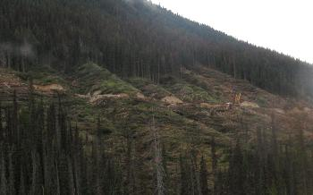 Clear-cut logging of mountain slope photograph.