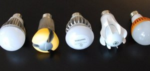Image: Various light-bulbs displayed.
